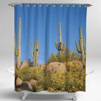 Avanti Photoreal Cactus 72-Inch Square Shower Curtain
