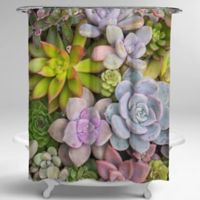 Avanti Photoreal Succulents 72-Inch Square Shower Curtain