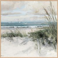 Catching the Wind 36-Inch x 36-Inch Canvas Framed Wall Art