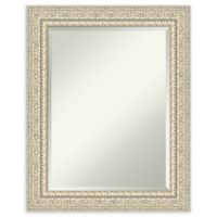 Amanti Art Fair Baroque Cream 24-Inch x 30-Inch Framed Bathroom Mirror