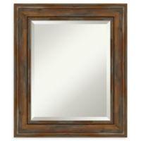 Amanti Art Alexandria Brown 22-Inch x 26-Inch Framed Bathroom Mirror