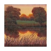 Trademark Fine Art Early Evening I 18-Inch Square Canvas Wall Art