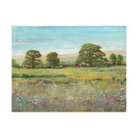 Trademark Fine Art Abundant Spring II 14-Inch x 19-Inch Landscape Wrapped Canvas Wall Art
