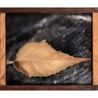 Natural Golden Fern Paper Framed Paper Wall Art