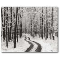 Courtside Market™ Snowy Country Road 16-Inch x 1.5-Inch Framed Wrapped Canvas