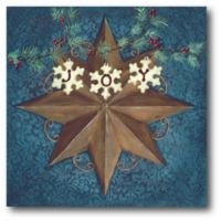 Courtside Market™ Brown Star With Snowflakes 16-Inch x 1.5-Inch Framed Wrapped Canvas