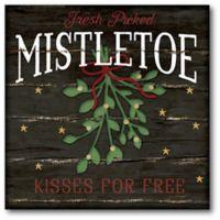 Courtside Market™ Mistletoe 16-Inch x 1.5-Inch Framed Wrapped Canvas