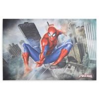 Spider-Man 36-Inch x 24-Inch Canvas Wall Art