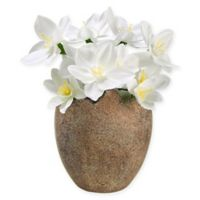 4.5-Inch Artificial Paperwhite Flowers in Easter Egg Pot