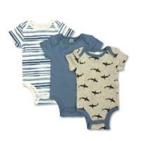 Modern Baby® 3-Pack 3-Month Shark Bodysuits