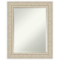 Amanti Art Fair Baroque Cream 24-Inch x 30-Inch Framed Wall Mirror