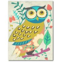 Courtside Market™ Colorful Owl 24-Inch x 18-Inch Framed Wrapped Canvas Wall Art