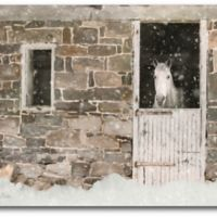 Courtside Market™ 16-Inch x 20-Inch Snowed In Horse Canvas Wall Art