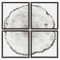 Kate And Laurel® 4-Piece Tree Rings 18-Inch Square Framed Canvas Wall Art