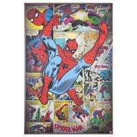 Amazing Spider-Man 24-Inch x 36-Inch Canvas Wall Art