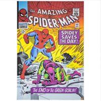 Spider-Man #40 24-Inch x 36-Inch Canvas Wall Art