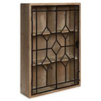 Kate and Laurel Megara Curio Wall Cabinet in Natural