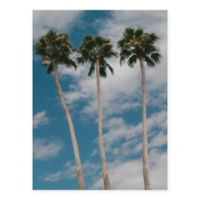 Masterpiece Art Gallery Three Palms 22-Inch x 28-Inch Canvas Wall Art