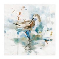 Masterpiece Art Gallery Palm Beach Piper 16-Inch Square Canvas Wall Art