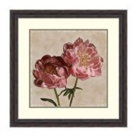 Amanti Art Peony II by Janel Pahl 27-Inch Square Framed Art Print