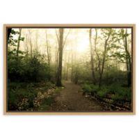 Amanti Art Appalachian Trail 23-Inch x 16-Inch Framed Canvas Wall Art