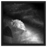 Amanti Art Floating Away 2 (Leaf) 16-Inch Square Framed Canvas Wall Art