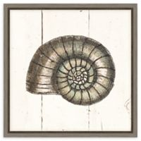 Amanti Art Shell Sketches I Shiplap 16-Inch Square Framed Canvas Wall Art