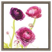 Amanti Art Spring Ranunculus I 16-Inch Square Framed Canvas Wall Art