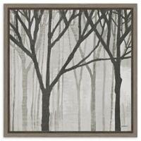 Amanti Art Spring Trees Greystone III 16-Inch Square Framed Canvas Wall Art