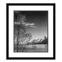 Amanti Art View of Mountains with Tree 20-Inch x 23-Inch Framed Art Print