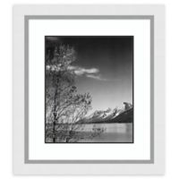 Amanti Art View of Mountains with Tree 24-Inch x 27-Inch Framed Art Print