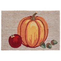 Liora Manne Pumpkin Indoor/Outdoor 2' X 3' Accent Rug in Natural