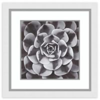Amanti Art® Assaf Frank Flowers 26-Inch Square Acrylic Framed Print in White