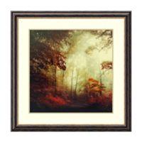 Amanti Art® Dirk Wuestenhagen Landscapes 34.75-Inch Square Acrylic Framed Print in Black