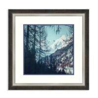 Amanti Art® Dirk Wuestenhagen Landscapes 29.25-Inch Square Acrylic Framed Print in Brown