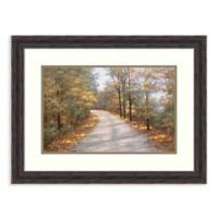 Amanti Art® Walking In Fall 29.38-Inch x 22.38-Inch Acrylic Framed Print