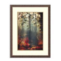Amanti Art® Dirk Wuestenhagen Landscapes 25.5-Inch x 33.5-Inch Acrylic Framed Print in Brown