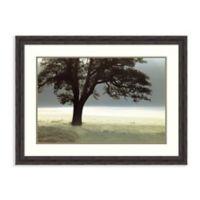 Amanti Art® Assaf Frank Landscapes 37.38-Inch x 28-Inch Acrylic Framed Print in Brown