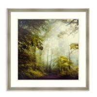 Amanti Art® Dirk Wuestenhagen Landscapes 31-Inch Square Acrylic Framed Print in Silver