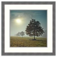 Amanti Art® Assaf Frank Landscapes 26.25-Inch Square Acrylic Framed Print in Blue