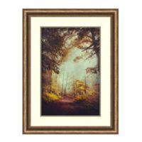 Amanti Art® Dirk Wuestenhagen Landscapes 25.88-Inch x 33.88-Inch Acrylic Framed Print in Bronze