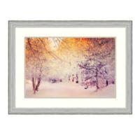 Amanti Art® Dirk Wuestenhagen Landscapes 33-Inch x 25-Inch Acrylic Framed Print in Silver