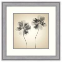 Amanti Art® Judy Stalus Flowers 23.38-Inch Square Acrylic Framed Print in Grey