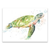 Patricia Pinto Sea Turtle 24-Inch x 18-Inch Wrapped Canvas