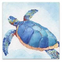 Galapagos Sea Turtle II 18-Inch Square Canvas Wall Art