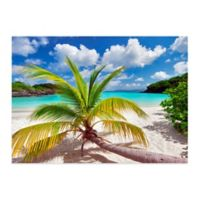 Christopher Knight Collection® Growing Palm 27-Inch x 36-Inch Wall Art