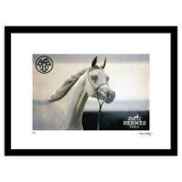 "Fairchild Paris ""Etalon Blanc"" 24-Inch x 30-Inch Framed Wall Art"