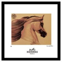 Fairchild Paris Horse 20-Inch x 20-Inch Framed Wall Art in Gold/Brown