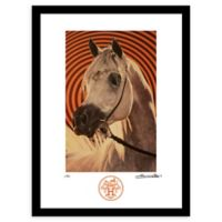 Fairchild Paris Arabian Sunburst Vintage Hermes Ad 18-Inch x 24-Inch Wall Art in Orange