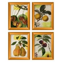 PTM Images Fruits Print 4-Piece Framed Wall Art